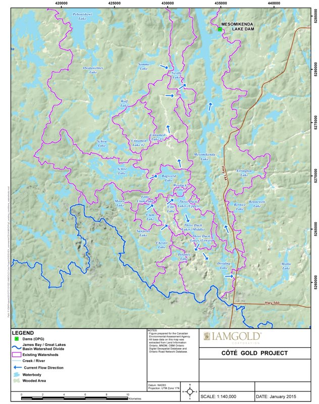 A map delineating local watersheds and existing water flow directions within the Mollie River and Mesomikenda Lake subwatersheds.